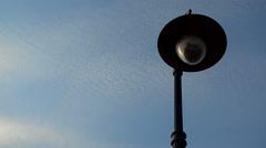 Mid close shot of Street light post Stock Footage