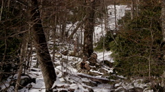 Frozen rocky stream waterfall at top Stock Footage