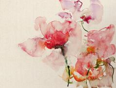 Watercolor flowers on canvas Stock Illustration