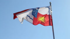 Flag of Sochi waving in the wind Stock Footage