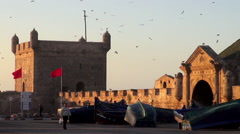 Handheld tilt of birds flying above the North Bastion in Essaouira, Morocco Stock Footage