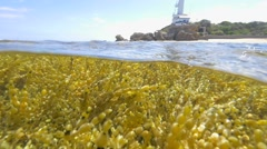 Lighthouse Point Lonsdale Stock Footage