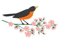 robin bird - stock illustration