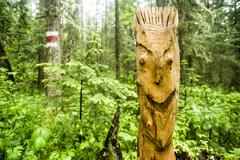 Close up of carved totem pole in forest Stock Photos