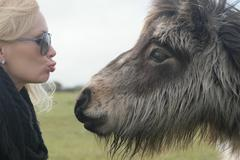 Close up Blond Woman About to Kiss a Hairy Horse - stock photo