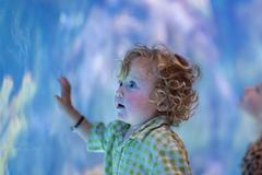 Caucasian baby boy admiring fish in aquarium Stock Photos