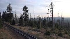 Stock Video Footage of 4k German Harz mountain Brocken dead trees panning