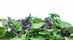 Mesclun mix salad Stock Footage