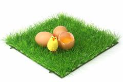 Decorative brown eggs - stock photo