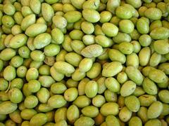 Fresh green olives Stock Photos