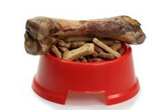 Bowl with dog food Stock Photos
