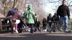Child Chasing Pigeons Stock Footage