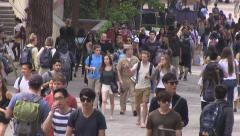 Diverse college students walking to class Stock Footage