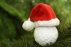 Santa claus cap - stock photo