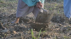 Farmer digging in field Stock Footage