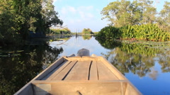 Wetland journey in Thailand by local boat Stock Footage
