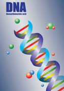 Double Helix DNA in Color Vector Illustration Stock Illustration