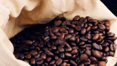 A lot of coffee beans falling down in a canvas sack, vintage style 1080p HD Stock Footage