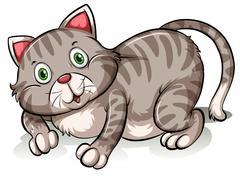 Stock Illustration of Fat gray cat