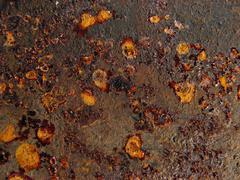 Stock Photo of Rusty 04