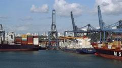Puerto de Balboa, Panama - stock footage