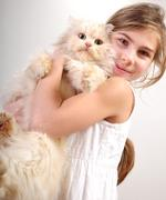 Stock Photo of Cute girl with a cat