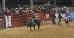 Cowboy Bull riding at Rodeo Competition Stock Footage