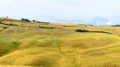 Crete Senesi (Tuscany, Italy), landscape at summer - stock photo