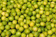 Freshly grown lemon produce at a local fruit market Stock Photos