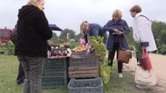People buy apple, plum, nut and other natural food from farmer Stock Footage