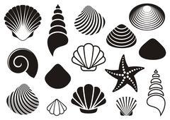 Sea shells and starfish - stock illustration