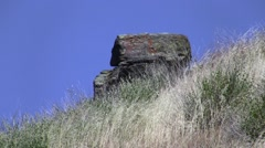 Grassy hillside zoomed with sqaure rock V05521 Stock Footage