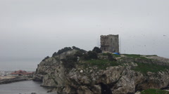 Dangerous, rocky shore line, reef, old abandon castle, seashores, Sile in winter Stock Footage