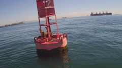 Bouy In Long Beach Harbor With Sea Lions Stock Footage