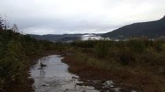 Alaska Mendenhall Juneau Glacier Stock Footage
