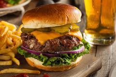 Grass Fed Bison Hamburger Stock Photos