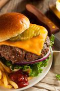 Grass Fed Bison Hamburger - stock photo