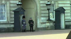 Palace Guard Stock Footage