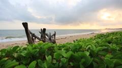Twilight scene on the beach Stock Footage