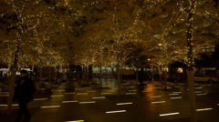 Christmas decorations on trees in downtown Manhattan, New York City - stock footage