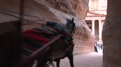 Horse cart approaching The Treasury of Petra Stock Footage