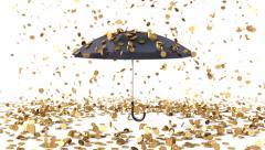 umbrella coins rain - stock footage