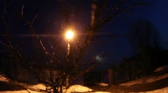 Night dry tree branch Backlit yellow light from the  post-motion video gopro Stock Footage