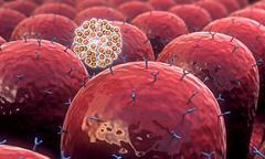 Field of cells Stock Illustration
