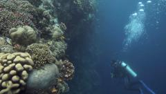 Scuba divers exploring coral reef wall Stock Footage