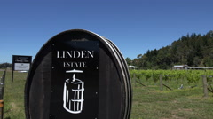Linden vineyard and sign, Esk Valley, Hawkes bay, New Zealand Stock Footage