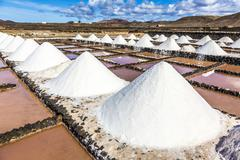 salt piles in the saline of Janubio in Lanzarote - stock photo