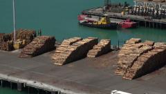 Zoom into logs stacked at Napier docks, New Zealand Stock Footage
