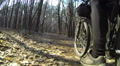 Bicycle walk on the wood. POV clip rear view Footage