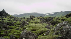 Iceland, Mountains Rocks Moss Landscape. Stock Footage